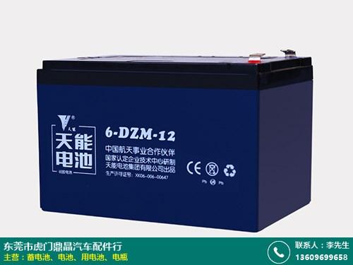 东坑三冠蓄电池有几种的图片