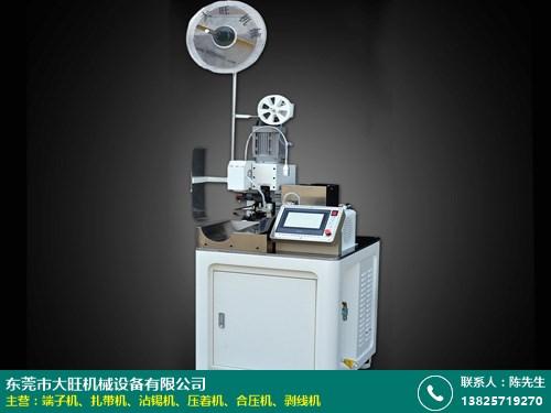 珠海自动化端子机定做的图片