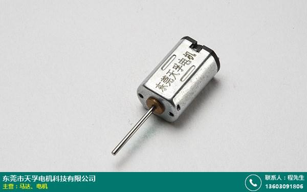 永康静音电机生产厂家的图片