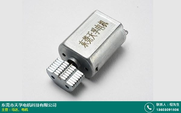 松山湖静音电机的图片