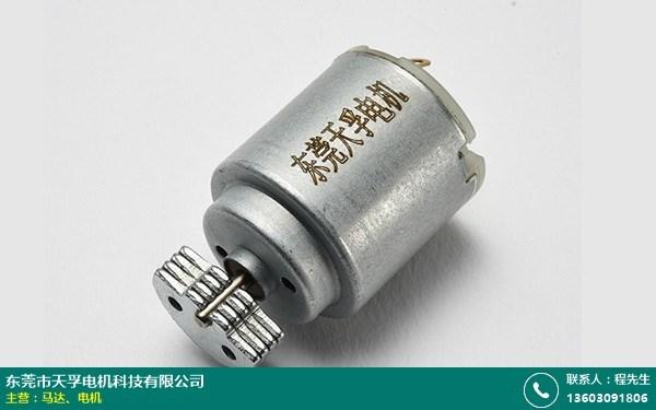 松山湖扁型电机公司的图片
