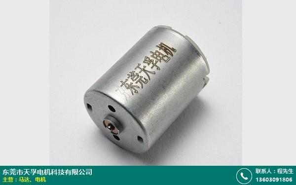 东莞4.5V电机的图片