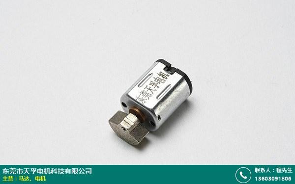 惠州钢齿电机的图片