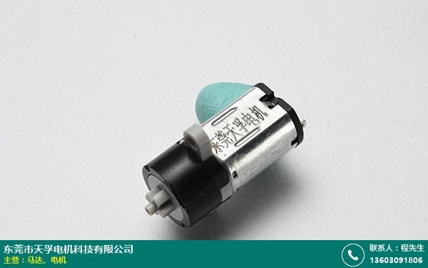 大岭山4.5V电机的图片