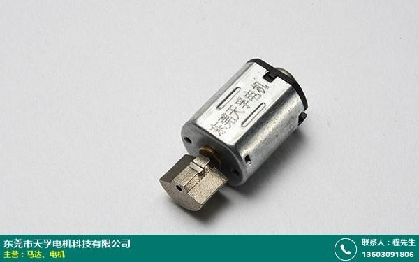 东莞搓澡器振动马达厂家的图片