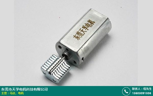 广东GM20马达的图片
