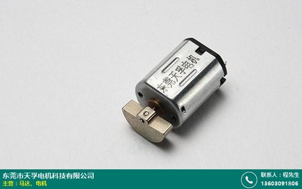 广东微型马达厂家批发的图片