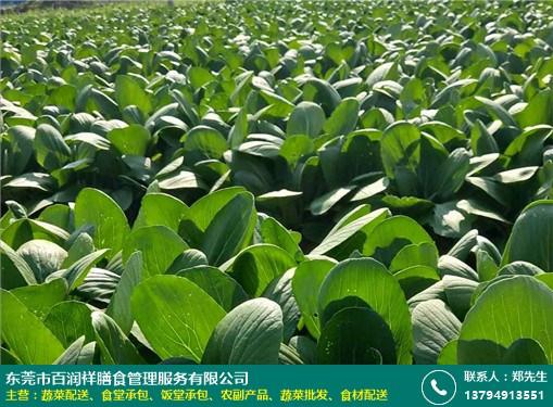 黄江单位蔬菜配送多少钱的图片