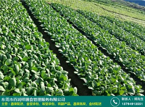 松岗食堂蔬菜配送服务的图片
