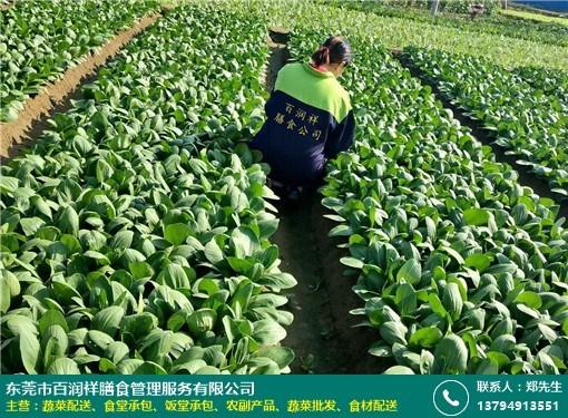 学校蔬菜配送的图片