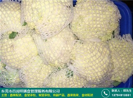 松岗单位蔬菜配送合作商的图片