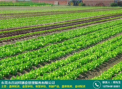 清溪机关单位蔬菜配送放心省心的图片