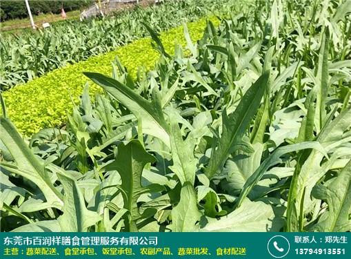 凤岗酒楼蔬菜配送供应厂家的图片