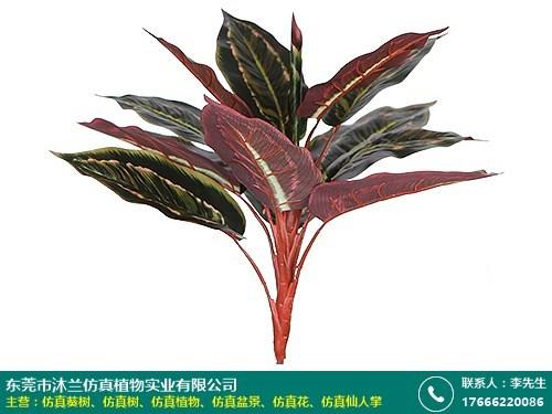 仿真植物的图片
