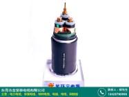 电力电缆:YJLV电力电缆国标_金豪泰电缆_7芯_FZ-YJV_鸿安达图片