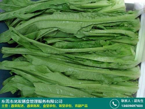 单位蔬菜配送报价的图片