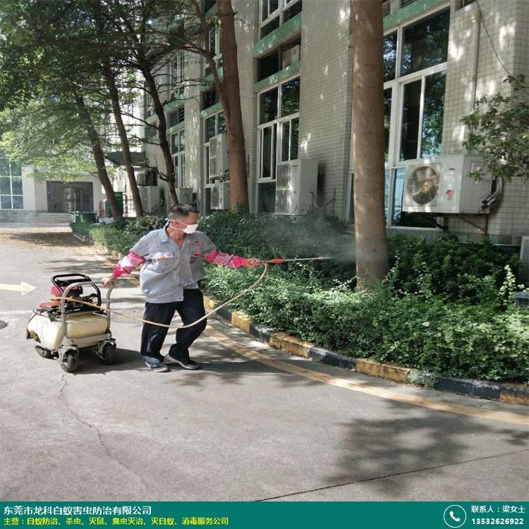 三江工厂杀虫机构的图片