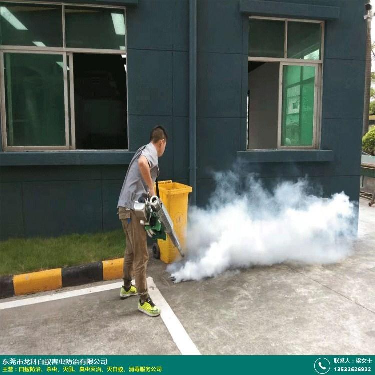 学校杀虫机构的图片