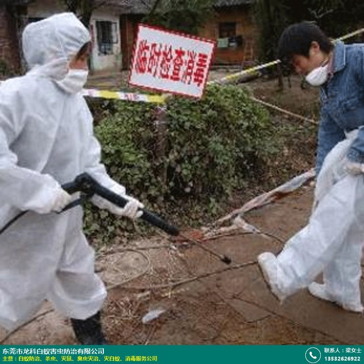 消毒服务公司的图片