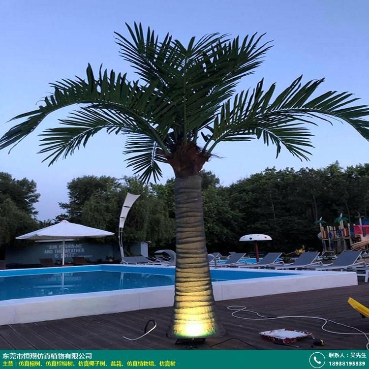 仿真椰子树的图片