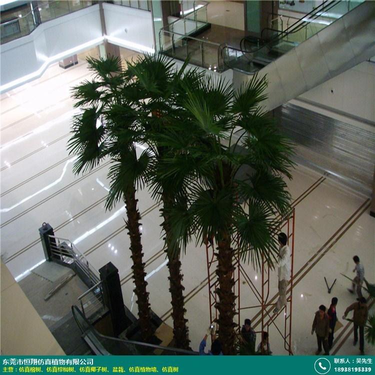 内蒙古仿真棕榈树哪里有的图片