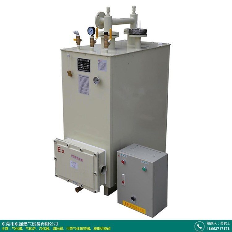 200KG气化器直销的图片