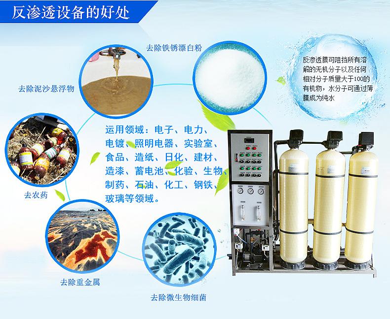自动反渗透纯水设备