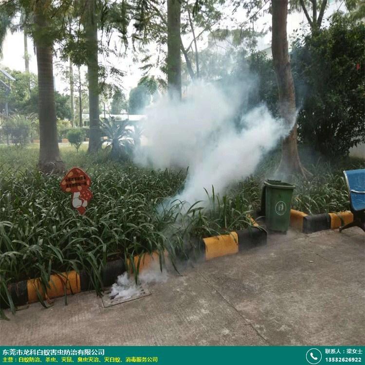 工地殺蟲機構的圖片